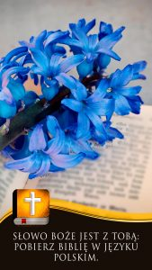 polish-bible-10